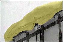 Nieve amarilla