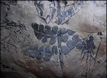 Selva_primitiva_fosil_cueva