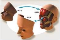 Transplante facial